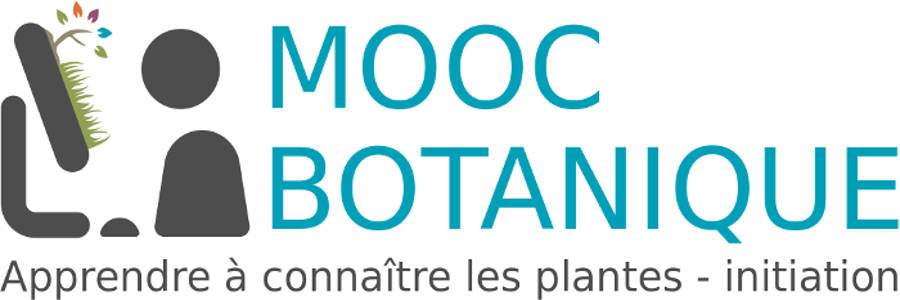 MOOC Botanique
